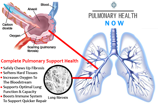 Restore Lungs
